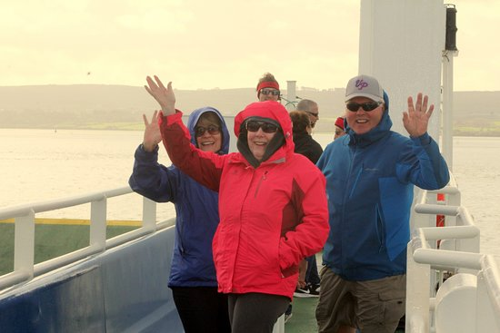 """Some of our """"Are We There Yet?"""" friends crossing from Killimer to Tarbert and Tralee, Co. Kerry"""