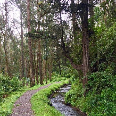Peguche, Ecuador: photo8.jpg