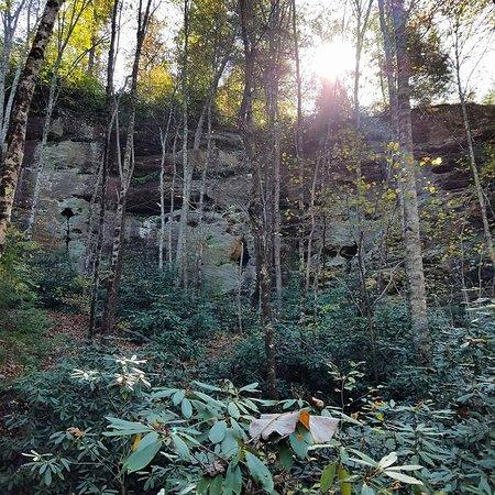 More trail scenery.