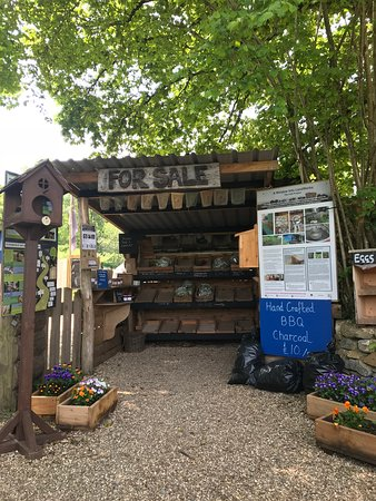 Dartington Hall Estate and Gardens: Honesty stall at Land Works produce and craft project.