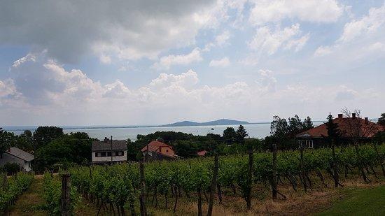 Badacsonytomaj, Hungary: 20180519_124456_large.jpg