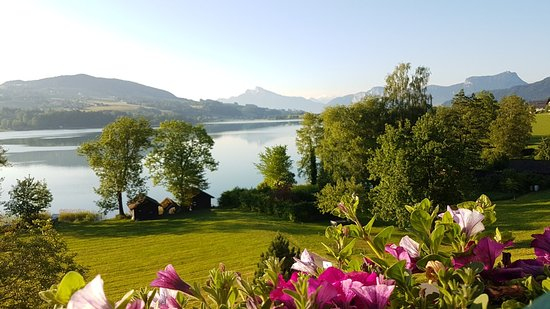 Zell am Moos, Österrike: 20180521_064637_large.jpg