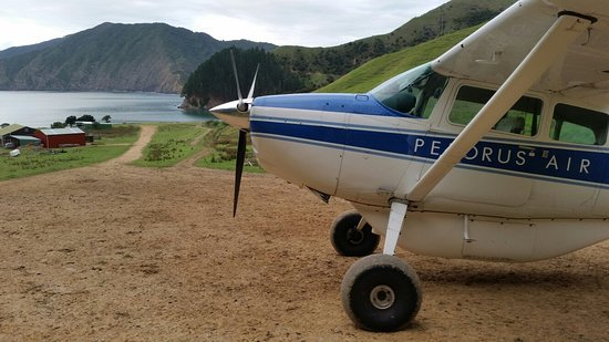 Picton, New Zealand: Pelorus Air