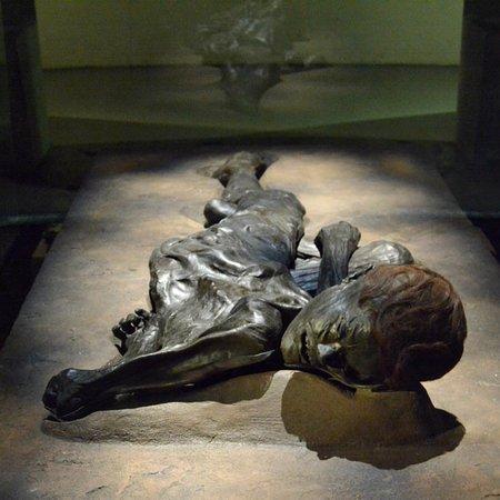 Moesgaard Museum Photo