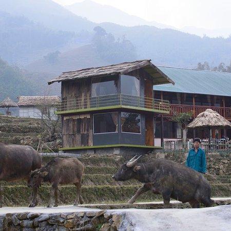 Ta Van, Vietnam: Zmonghomestay,welcome!