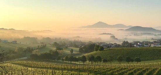 Slovenske Konjice, Słowenia: 6am morning view from our room