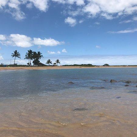 Bilde fra Salt Pond Beach Park