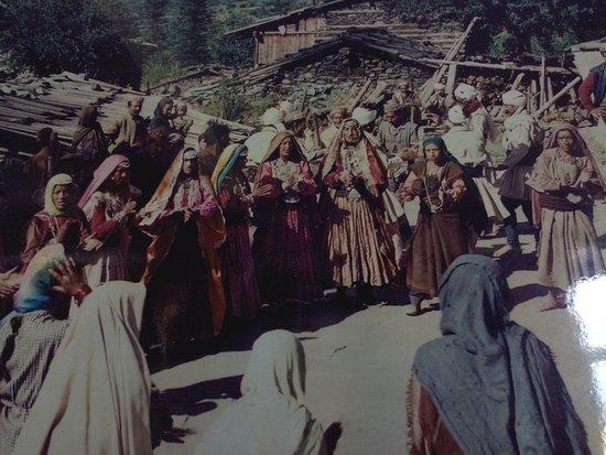 Himachal Darshan Photo Gallery照片