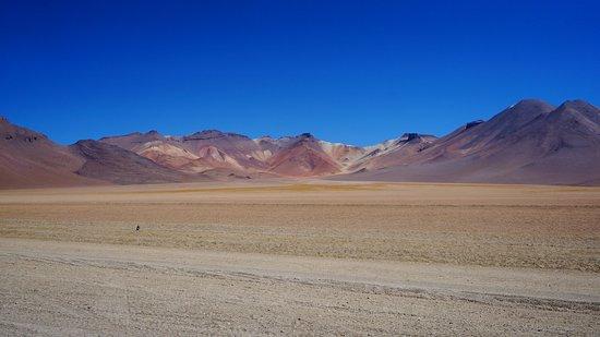 Potosi Department, Bolivia: L'environnement du désert