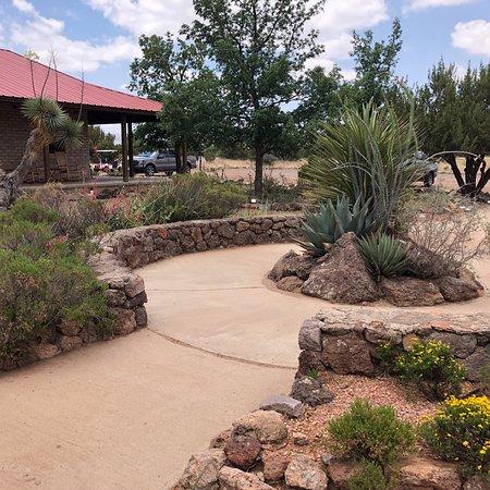 Chihuahuan Desert Nature Park – kép