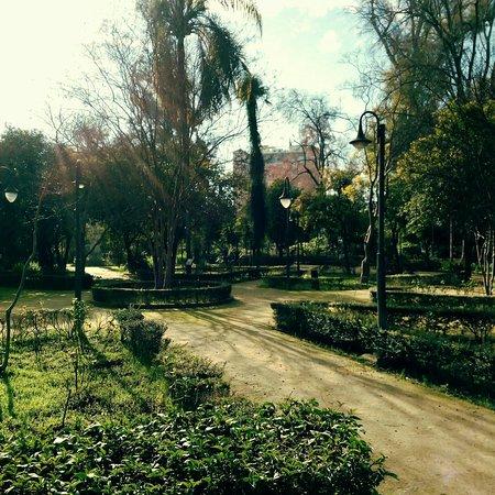 Parque de Maria Luisa: 20180119-1_large.jpg