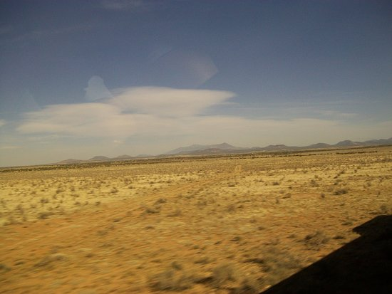 Williams, AZ: Lots of this view!