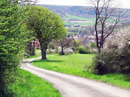 Kreuzweg zum Käppele: down hill