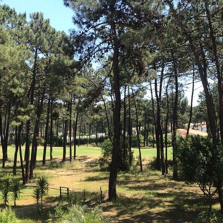 Charneca da Caparica, البرتغال: photo3.jpg