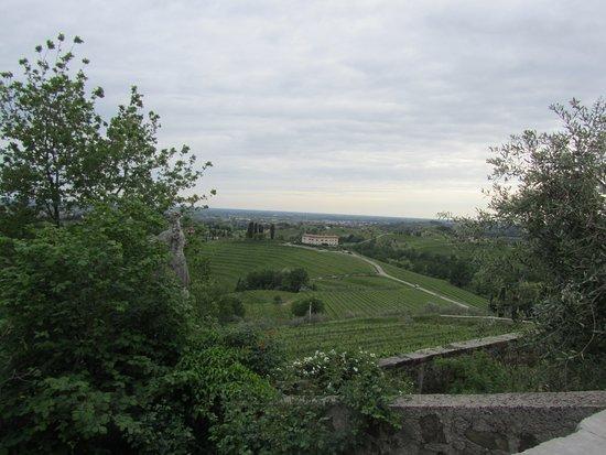 Abbey of Rosazzo (Abbazia di Rosazzo): La veduta verso i vigneti