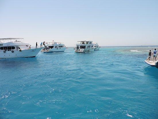 Giftun Islands: boat trip