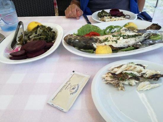 Petriti, اليونان: heerlijke seabream met warme bieten