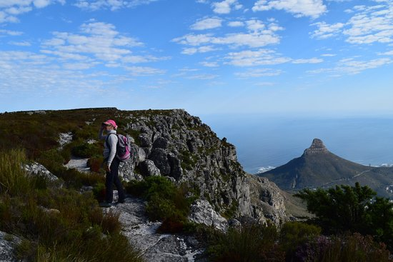 Table Mountain Walks: Margaret and Lion's Head