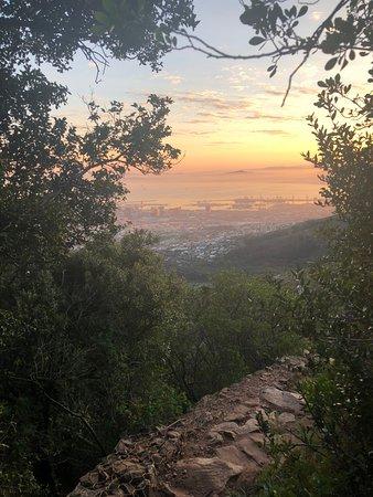 Table Mountain Walks: Cape Town at dawn