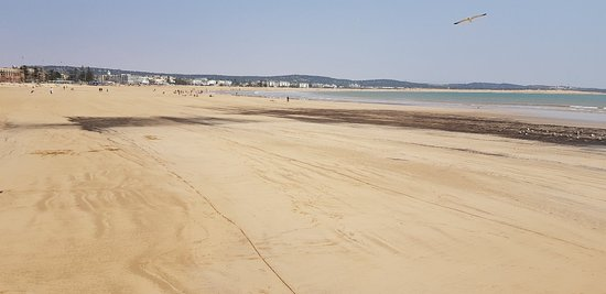 Essaouira Beach: 20180521_141304_large.jpg