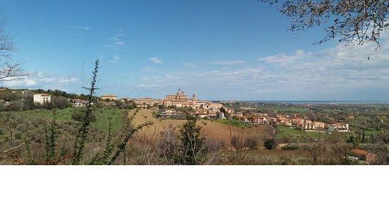 """Monte San Vito, Italy: Country House """"Gli ulivi del monte"""""""