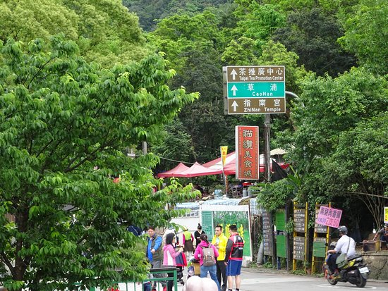 Maokong Gondola: Follow the signs to the Tea Promotion Center for a cup of free tea