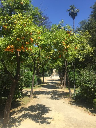 Parque de Maria Luisa: many things to see