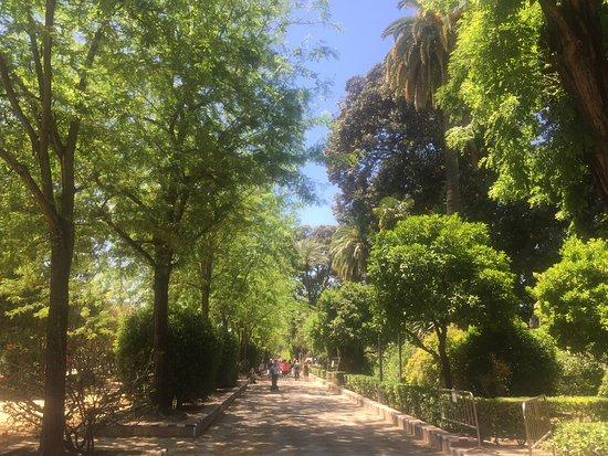Parque de Maria Luisa: park