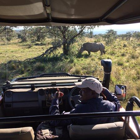 Welgevonden Game Reserve, جنوب أفريقيا: photo0.jpg