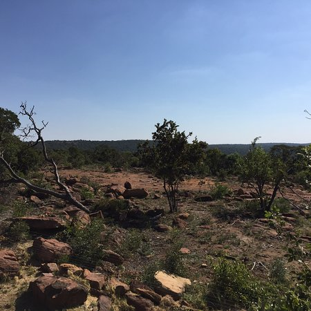 Welgevonden Game Reserve, جنوب أفريقيا: photo3.jpg