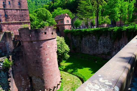 Château d'Heidelberg : The Dry Moat also know as the Deer Moat. In times of peace deer grazed in the moat.