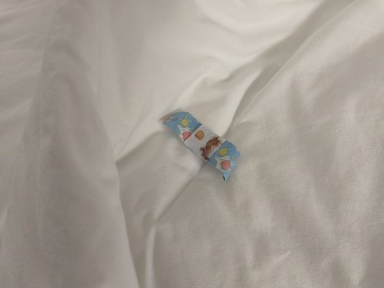 Clarion Inn: Bloody bandage in bed