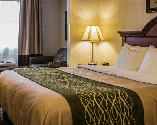 Dimondale, MI: Guest room
