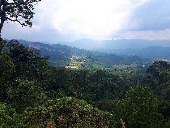 Foto de Lam's Travel - Private Day Tours