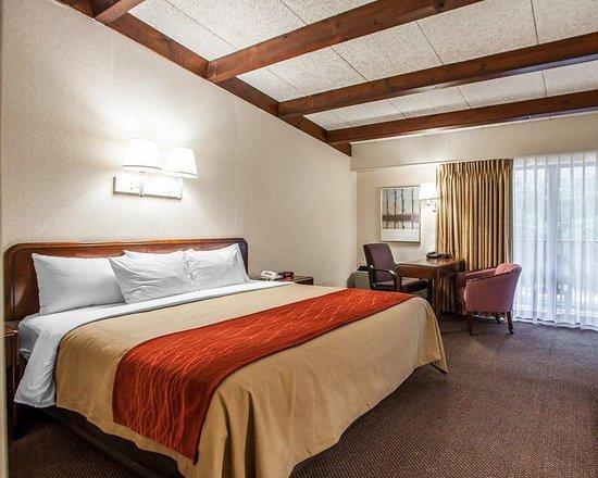 Middletown, Nueva Jersey: Guest room