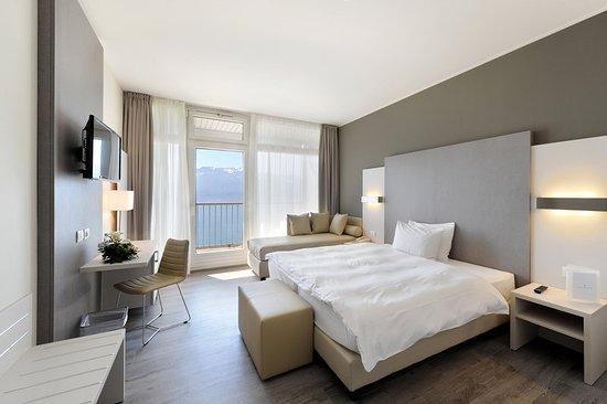 เชกซ์เบรส, สวิตเซอร์แลนด์: Guest room