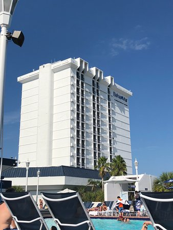 Bahia Mar Fort Lauderdale Beach - a Doubletree by Hilton Hotel: Hotel from the pool