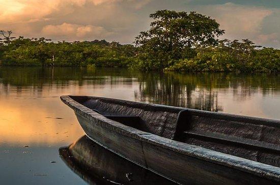 Tour de 4 días por la selva amazónica...