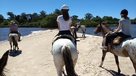 Colonia Horseriding: Horse Riding