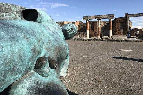 Visita guidata di Pompei con