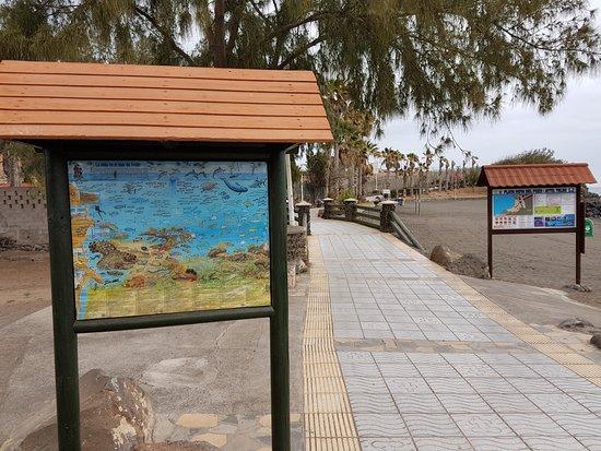 Playa Hoya Del Pozo.