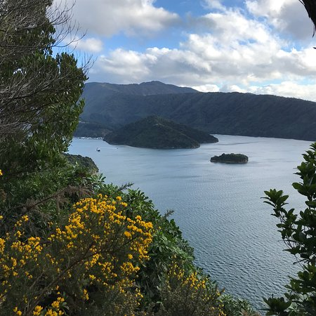 Queen Charlotte Track: photo1.jpg