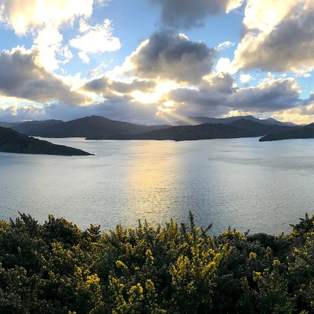 Queen Charlotte Track: photo3.jpg