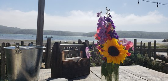 Marshall, كاليفورنيا: Picnic table overlooking the bay at Hog Island