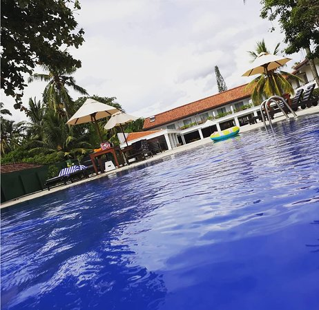 Hotel Hibiscus Beach : Beautiful Pool