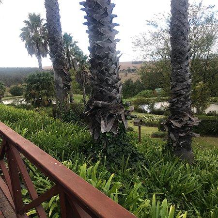 Caledon, Sudáfrica: photo0.jpg