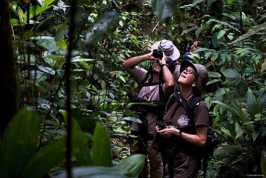Horquetas, Kosta Rika: Explore every trail