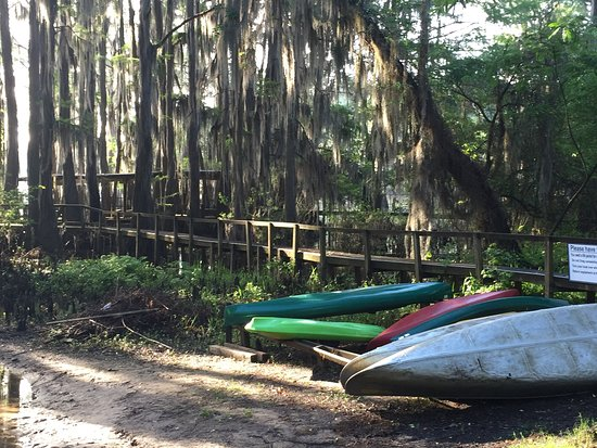 Uncertain, TX: Canoe/Kayak beach area to launch from (they have life vests also)