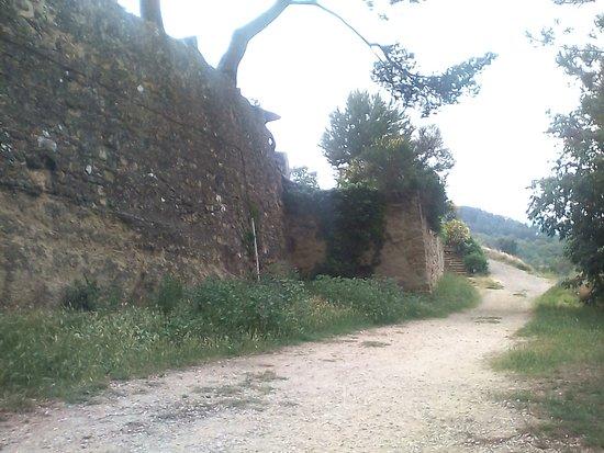 Eglise Saint-Etienne: Murs