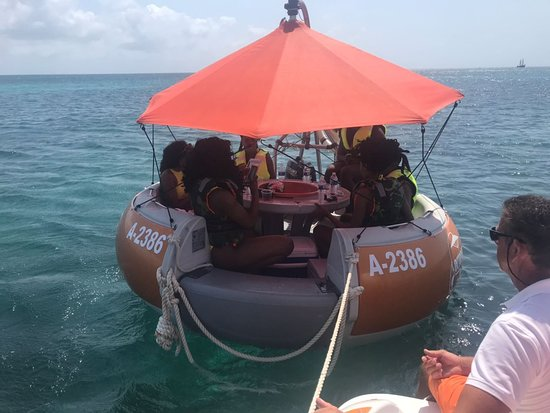 Octopus Sailing Charters: Aqua Donut Private Boat Octopus Aruba Fun Sun Friends Family Drinks Caribbean